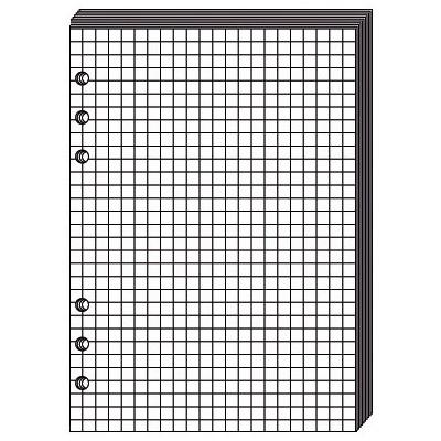 Recharge QUOVADIS Notes papier quadrillé blanc 10 x 17cm pour TIMER 17