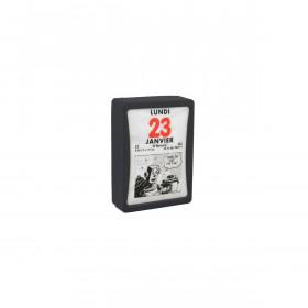 Bloc éphéméride journalier 6 x 9 cm humouristique sous boîtier plastique autocollant à effeuiller.