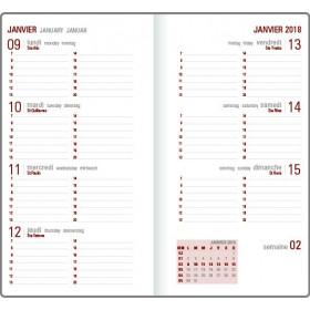 Recharge agenda OBERTHUR Contemporain 16 - 8,9x16,5cm - 1 semaine sur 2 pages