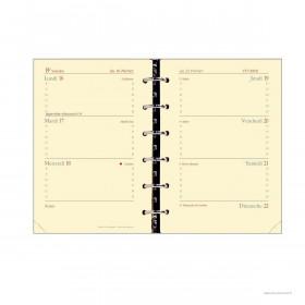 Recharge QUOVADIS Timer 14 Horizontal 8 x 12.5 cm Janvier - décembre