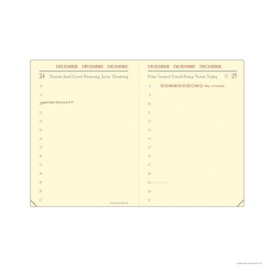 209007Q - MINIDAY rech s/f ML