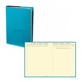 Agenda QUOVADIS MINIDAY ML Club turquoise - 7x10cm - 1 jour par page
