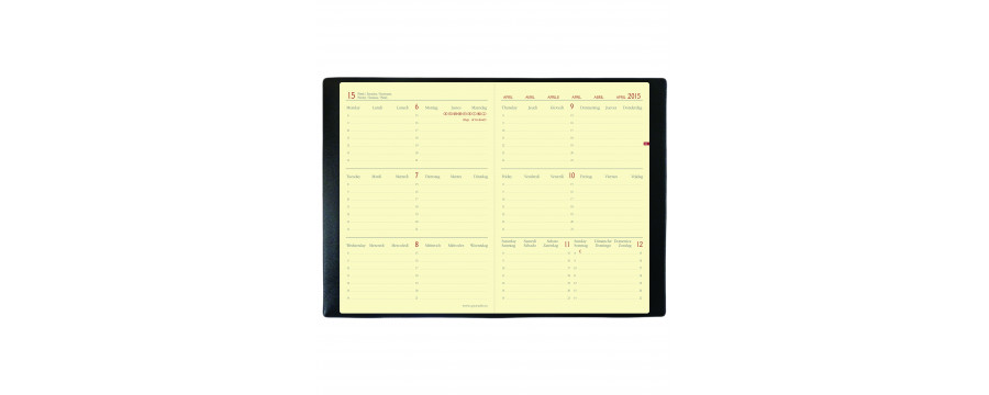 Agendas QUOVADIS Horizontal 15 SD ML